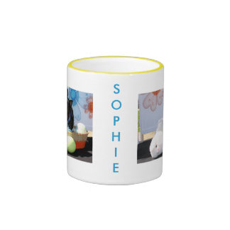 Sophie - mezcla -4 de Pom Terrier Tazas