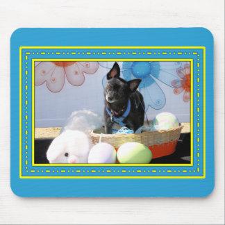 Sophie - Pom Terrier Mix -4 Mouse Pad