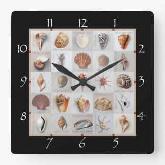 Sophisticated Shells Square Wall Clock