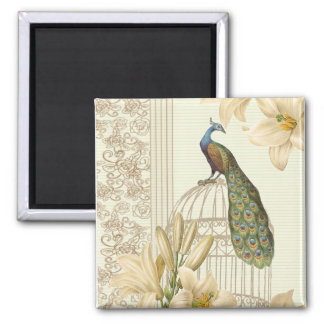 Sophisticated vintage Peacock & Cage Lily 2 Inch Square Magnet
