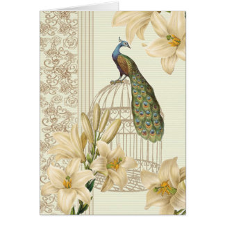 Sophisticated vintage Peacock & Cage Lily Cards