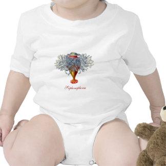 Sophonophorae Infant creeper