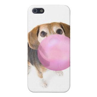 soplo del beagle iPhone 5 funda