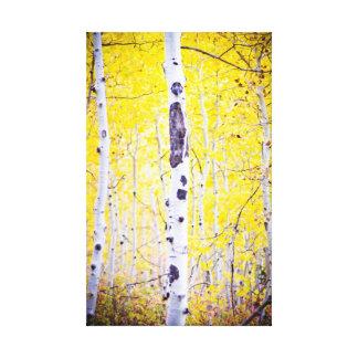 Soporte amarillo de Aspen Lienzo Envuelto Para Galerias