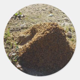 Soporte asimétrico de la casa de la hormiga pegatina redonda