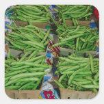 Soporte de la granja de la haba verde calcomanía cuadradas