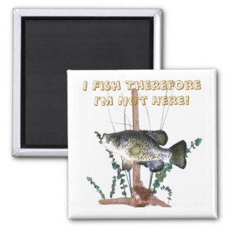 Soporte del tipo de pez imán cuadrado