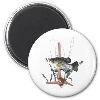 Soporte del tipo de pez imán redondo 5 cm