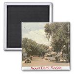 Soporte Dora, la Florida Imán Para Frigorífico