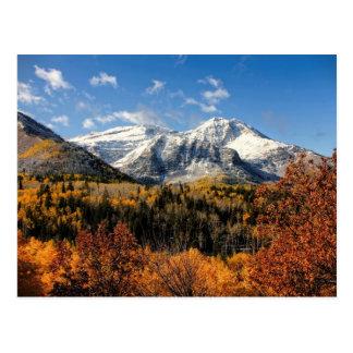 Soporte Timpanogos en las montañas de Utah del oto Tarjeta Postal