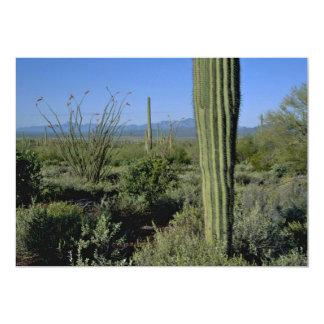 """Soportes de los cactus invitación 5"""" x 7"""""""