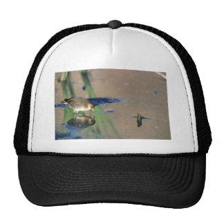 Sora Trucker Hat