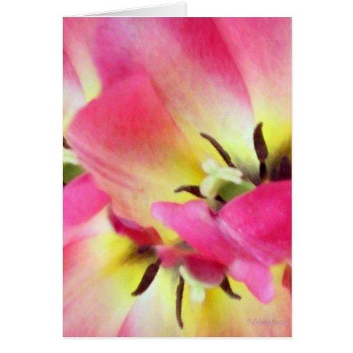 Sorbete floral tarjeta de felicitación