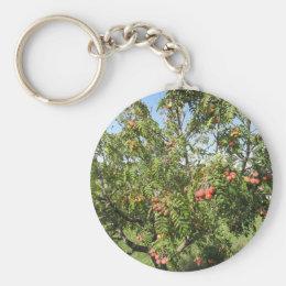 Sorbs in fruit tree . Tuscany, Italy Keychain