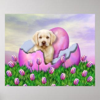 Sorpresa amarilla de Labrador Pascua Póster