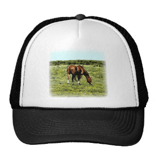 Sorrel Horse Mesh Hats