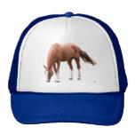 Sorrel Horse Trucker Hat