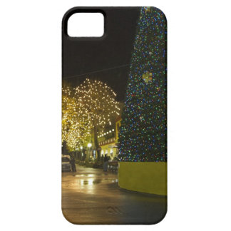 Sorrento iPhone 5 Covers