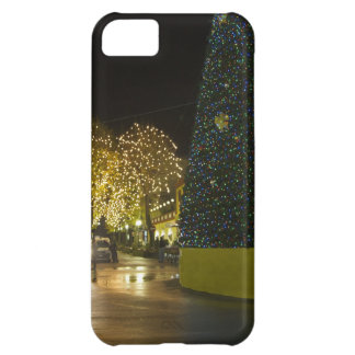 Sorrento Case For iPhone 5C