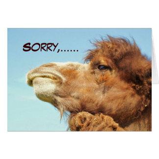 Sorry - Card