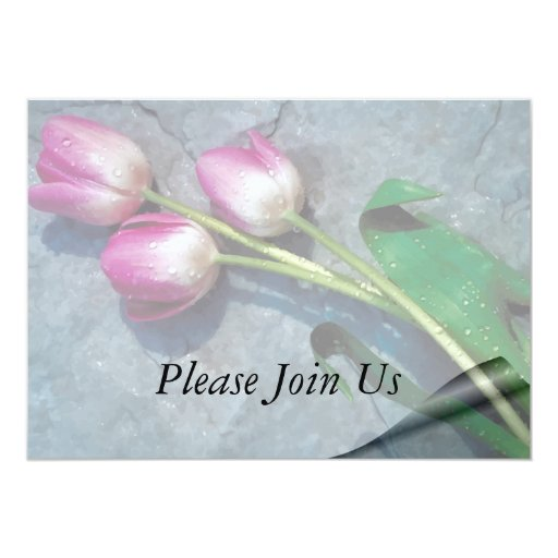 Sorry For Your Loss Pink Tulips Card