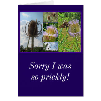 Sorry Greeting Card - Teasel Thistle