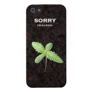 Sorry I' m Ilegal iPhone 5 Coberturas