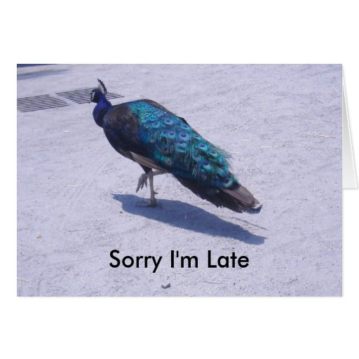 Sorry I'm Late Birthday Card