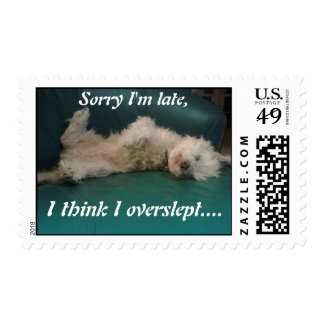 Sorry, I'm late puppy postage