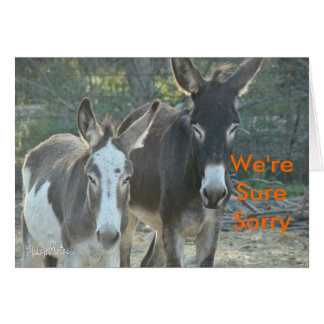 Sorry Mules-customize Card