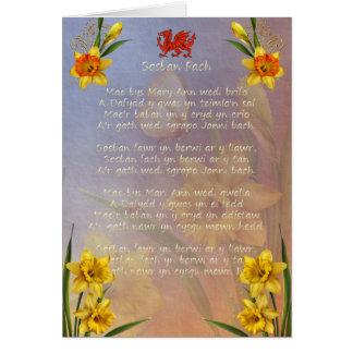 Sospan Fach Daffodil Decorated Card