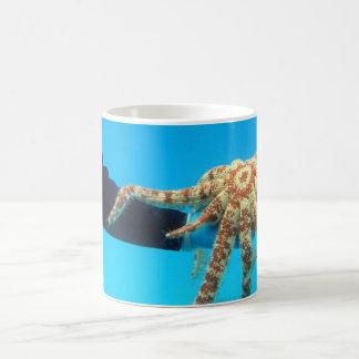 Sostener una estrella de mar tazas de café