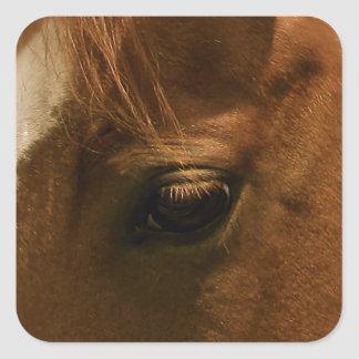 Souful Horse Eye Square Sticker