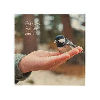 Soul Detox Plan Wood Wall Art - Feed a Bird
