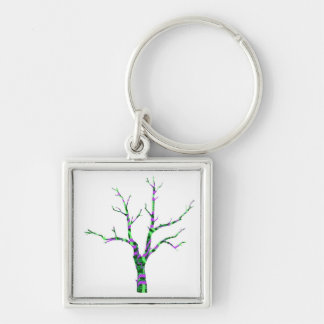 Soul is our STEM to experience nature Keychains