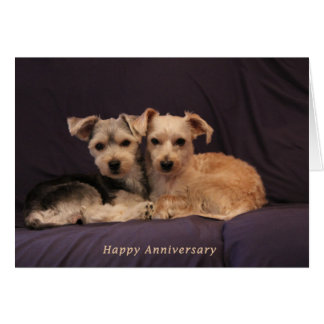 Soul mate anniversary card