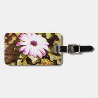 Soul of nature bag tag