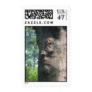 Soul of the tree postage