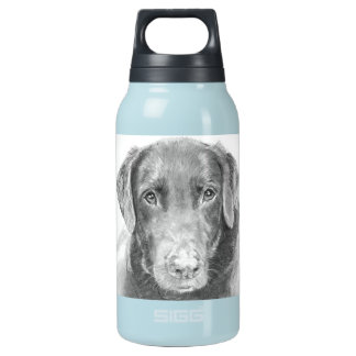 Soulful Chocolate Labrador Sketch Insulated Water Bottle