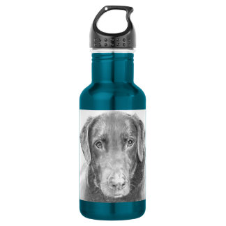 Soulful Chocolate Labrador Sketch Stainless Steel Water Bottle