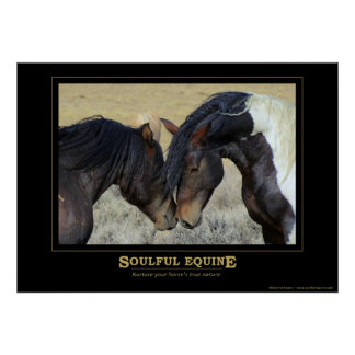 Soulful Equine Poster