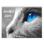 Soulful Eyes of the Cat Wall Calendar