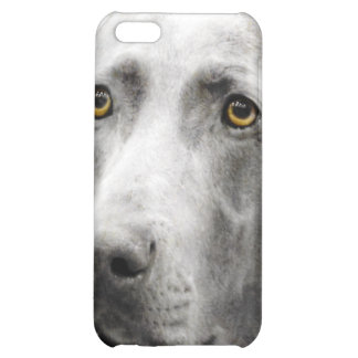 Soulful Eyes of the Weimaraner iPhone 5C Covers