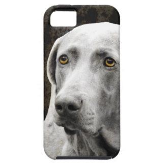 Soulful Eyes of the Weimaraner iPhone SE/5/5s Case
