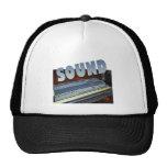 sound mesh hat