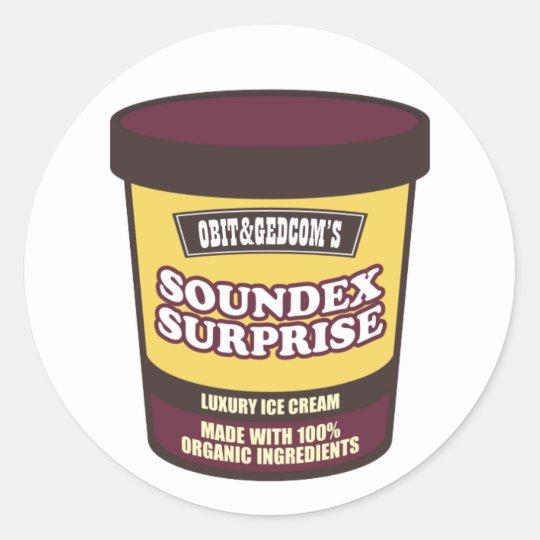 Soundex Surprise Ice Cream Classic Round Sticker