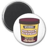 Soundex Surprise Ice Cream Fridge Magnet