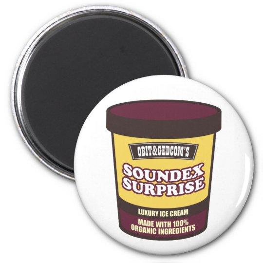 Soundex Surprise Ice Cream Magnet