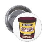Soundex Surprise Ice Cream Pinback Button