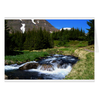 Sounds of Nature greeting card